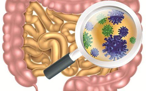 Nhiễm khuẩn đường ruột ở người lớn
